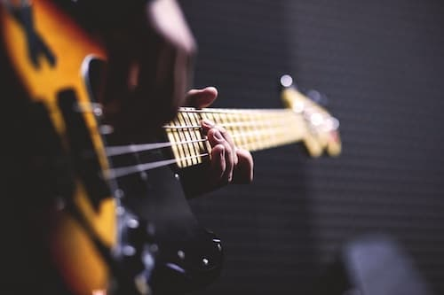 beginner bass guitar reviews