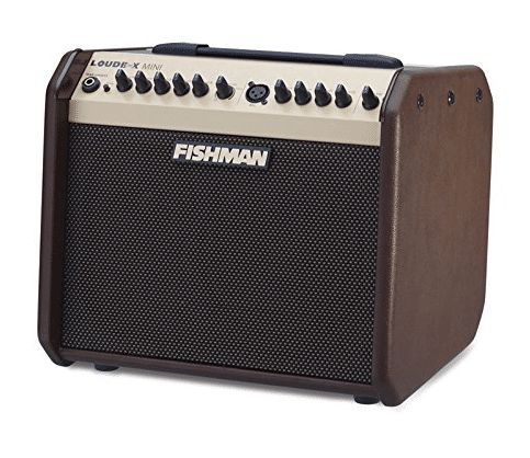 Fishman Loudbox Mini review