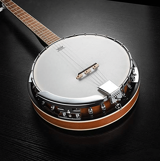The 5 Best Banjos For Beginners In 2019 | MusicAlley