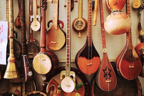 beginner mandolin reviews